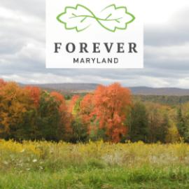 Forever Maryland Foundation