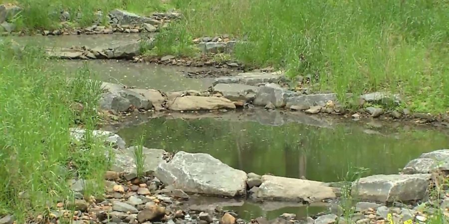 Landowners Sought For Catoctin CreekWatershed Restoration