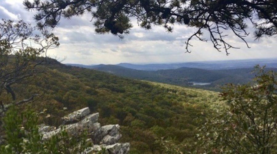 HMCA Eyes South Mountain Campaign
